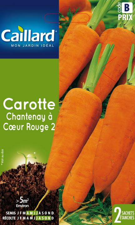 CAROTTE CHANTENAY A COEUR ROUGE 2