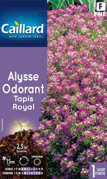 ALYSSE ODORANT TAPIS ROYAL