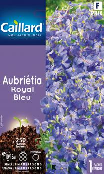 AUBRIETIA ROYAL BLEU