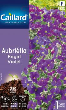 AUBRIETIA ROYAL VIOLET