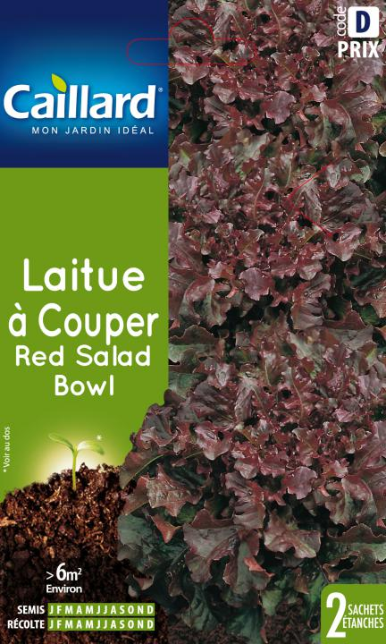 LAITUE A COUPER RED SALAD BOWL